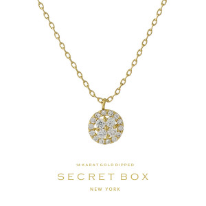"""Secret Box 14 karat gold over brass clear rhinestone circle pendant necklace. Approximately 16"""" in length. Sold in gift box."""