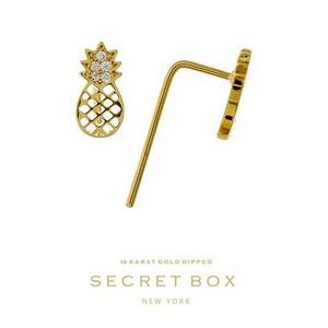 Secret Box 14 Karat Gold Dipped over brass pineapple stud earrings. 9mm in length.
