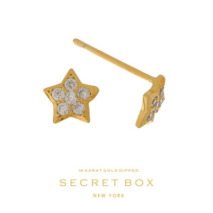 """Secret Box 14 karat gold dipped over brass star stud earrings. Approximately 1/4"""" in length. Sold in a gift box."""